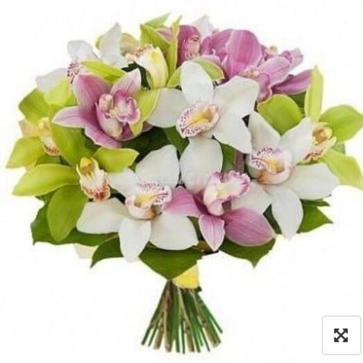 15 орхидей