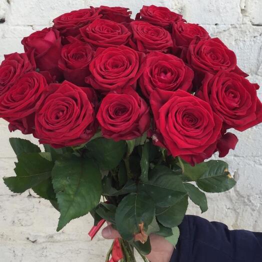 17 красных роз 50см