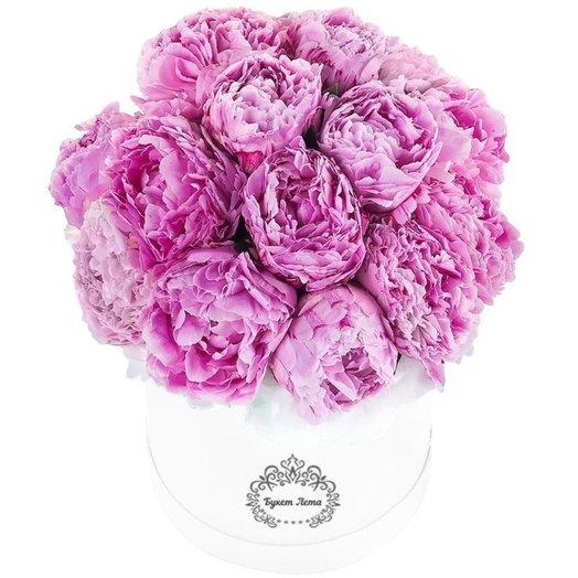 Розовые пионы 17 штук в средней шляпной коробке: букеты цветов на заказ Flowwow