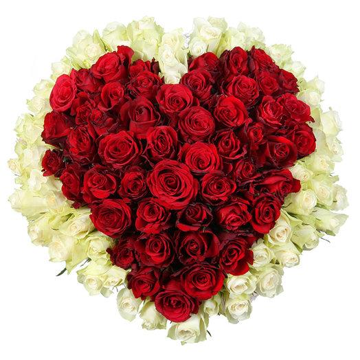 """Букет из 101 красной и белой розы """"Любимой"""": букеты цветов на заказ Flowwow"""