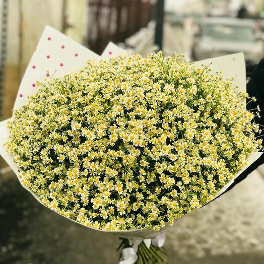 Kami⚡️: букеты цветов на заказ Flowwow
