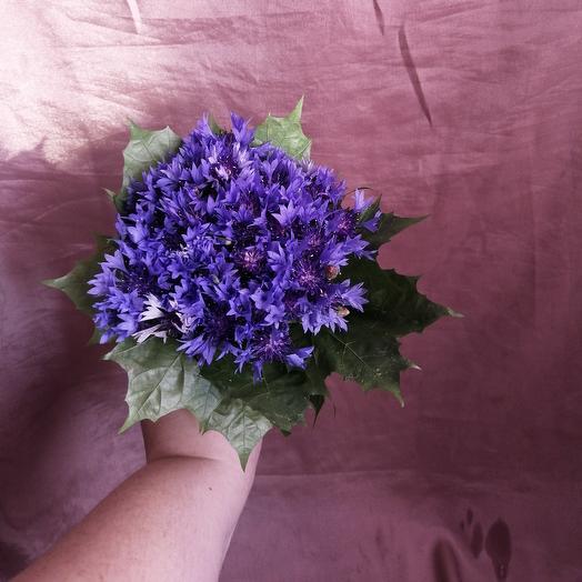 Василек: букеты цветов на заказ Flowwow