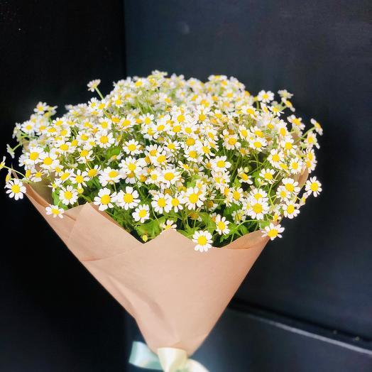 На ромашковом поле: букеты цветов на заказ Flowwow