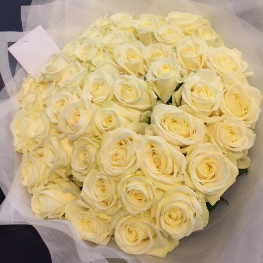 Эквадорская розы 51 шт: букеты цветов на заказ Flowwow