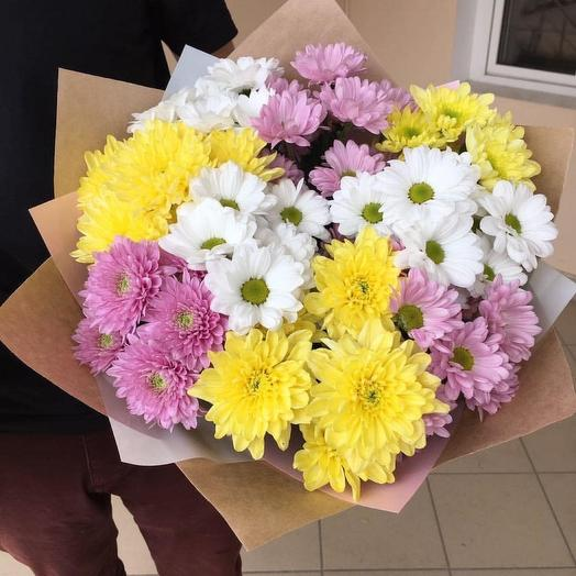 9 bright chrysanthemums