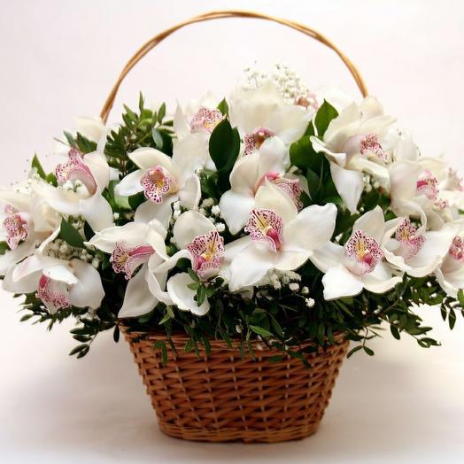 Корзина с белой орхидеей