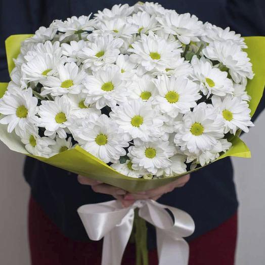 9 белых ромашковых хризантем