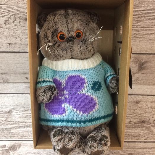 Басик в весеннем свитере