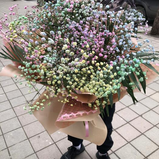 Bouquet of colored gypsophila
