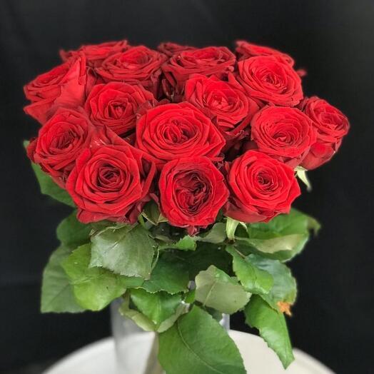 15 роз под ленту 50см