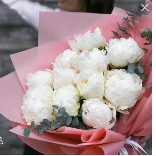 Large white peonies France -11 pieces