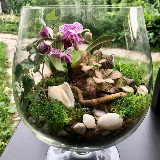 Бокал с орхидеями 5 литров