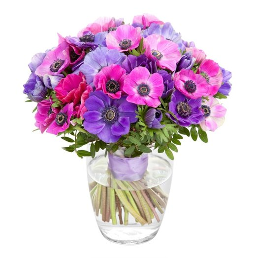 Анемоныовое счастье: букеты цветов на заказ Flowwow