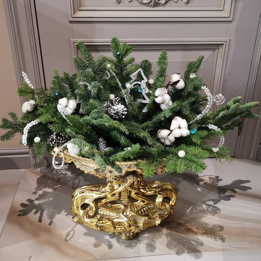 Еловая композиция на долгие месяцы от Floristic World: букеты цветов на заказ Flowwow
