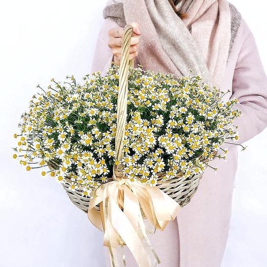 Корзина с ромашками: букеты цветов на заказ Flowwow