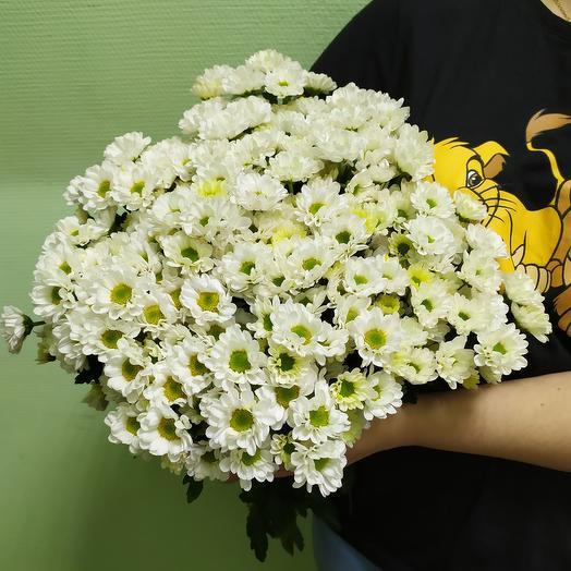 Хризантемы 25: букеты цветов на заказ Flowwow