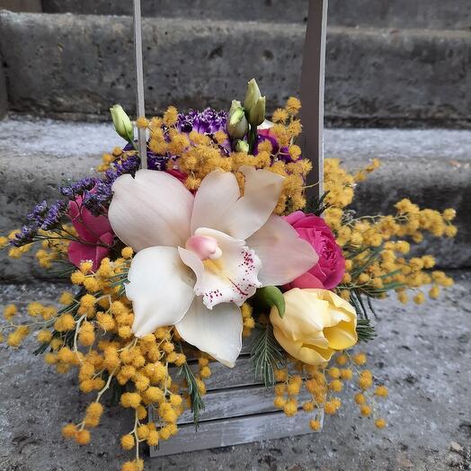 Ящик с мимозой и орхидеей