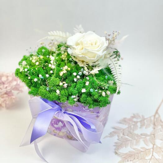 Большое зелёное сердце