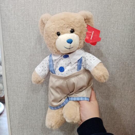 Медведь Тэо