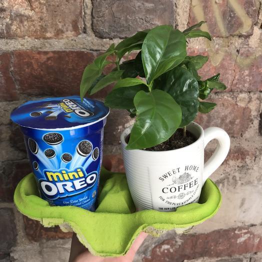 Кофе Орео: букеты цветов на заказ Flowwow