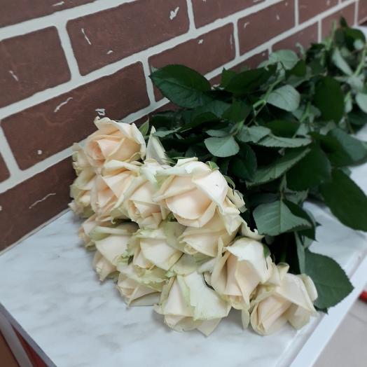 15 роз Пинч Аваланж 60 см: букеты цветов на заказ Flowwow