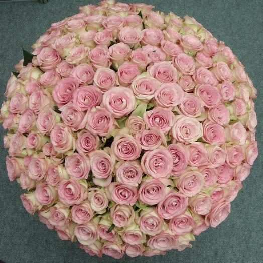 Happy birthday: букеты цветов на заказ Flowwow