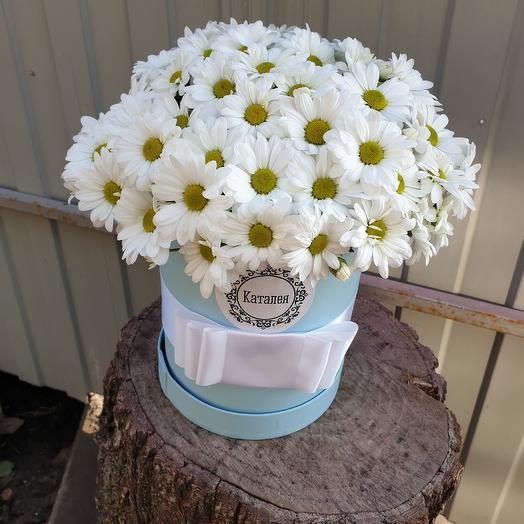 Для милашки ромашки: букеты цветов на заказ Flowwow
