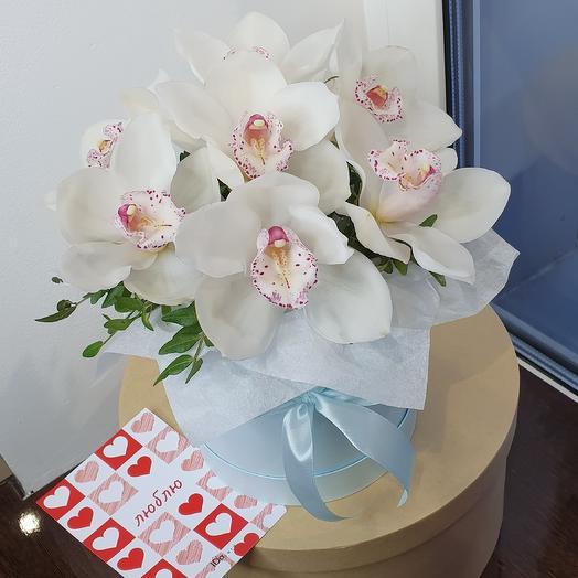 Белоснежная орхидея 14 февраля