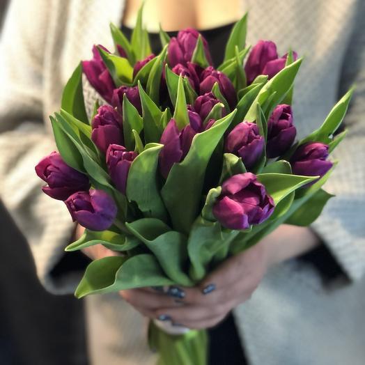 Лиловые тюльпаны 19