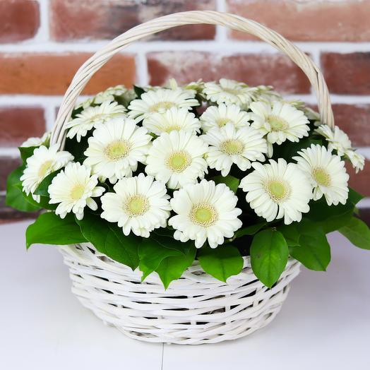 Корзина из 29 белых гермини. N767: букеты цветов на заказ Flowwow
