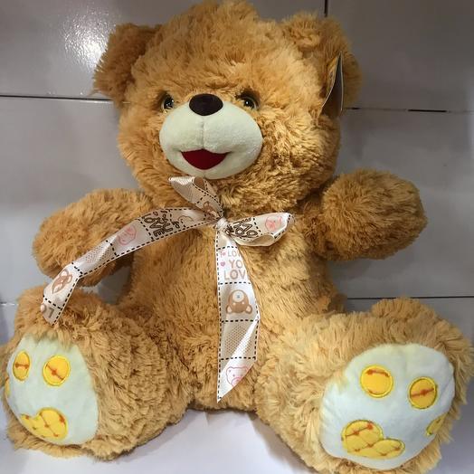 Bears 🐻