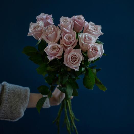 Акция! Пудровые розы 60 см Эквадор