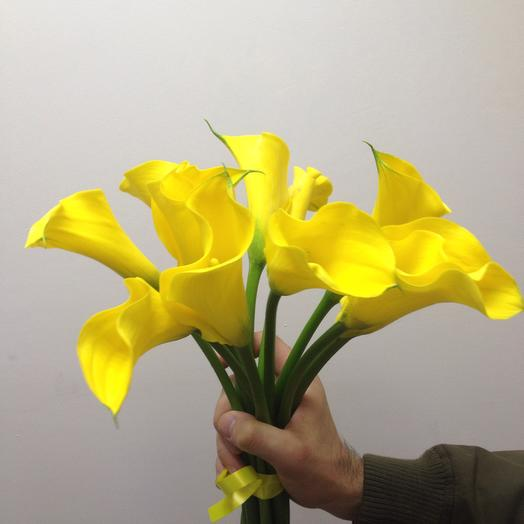 Букет из 11 желтых калл: букеты цветов на заказ Flowwow