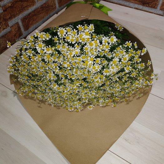Нежное признание- букет из кустовых ромашек: букеты цветов на заказ Flowwow
