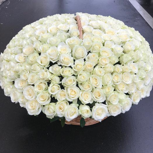 Корзина из 301 розы Аваланж: букеты цветов на заказ Flowwow