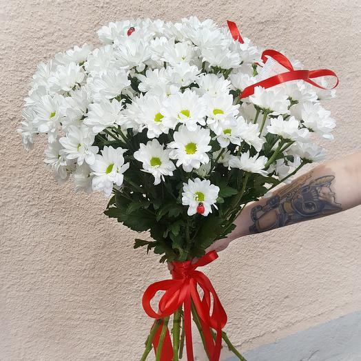 Букет из 15 веток хризантемы: букеты цветов на заказ Flowwow