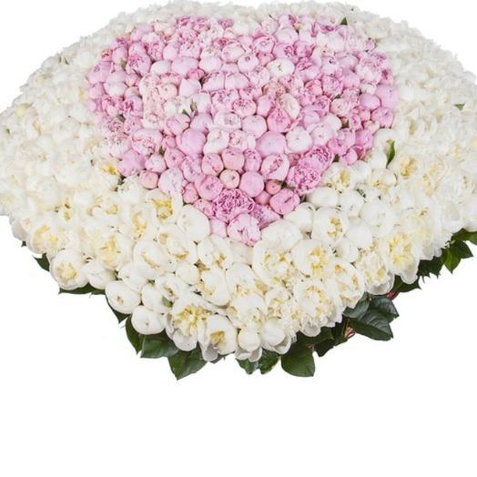 351 пион: букеты цветов на заказ Flowwow