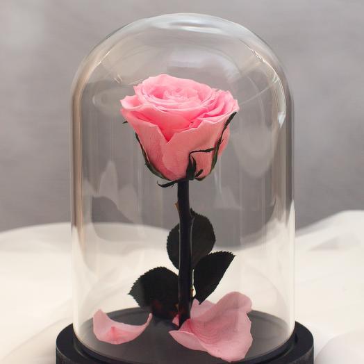 Роза в колбе RozaRose Мини Розовая