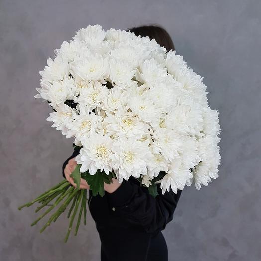 15 кустовых хризантем