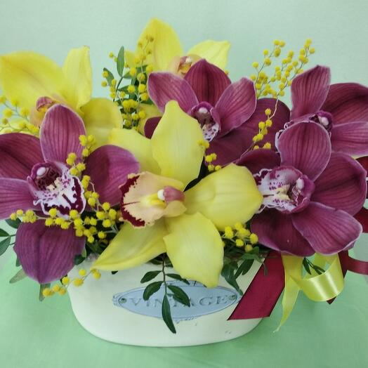 Композиции с орхидей