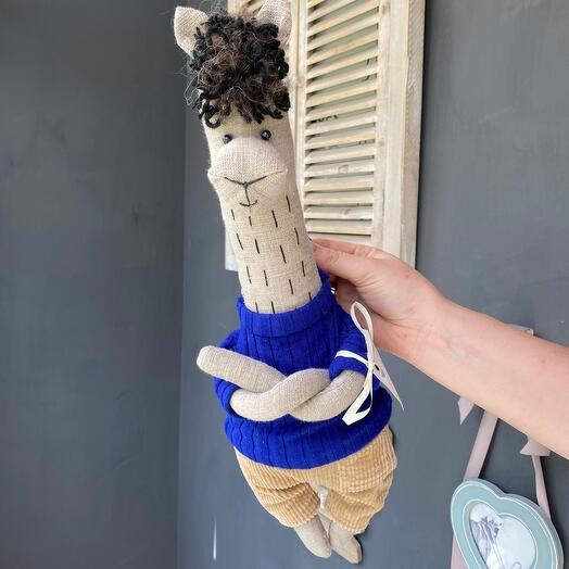 Лама в синем свитере