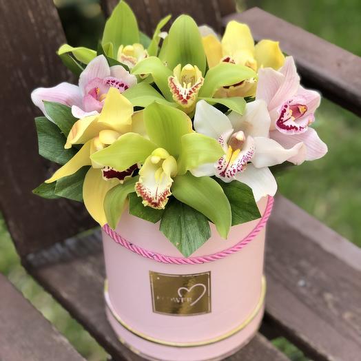 Цилиндр с орхидеями микс: букеты цветов на заказ Flowwow