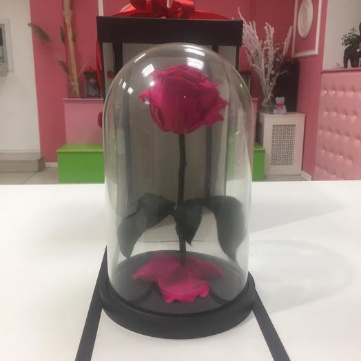 Роза в колбе тёмно розовая: букеты цветов на заказ Flowwow