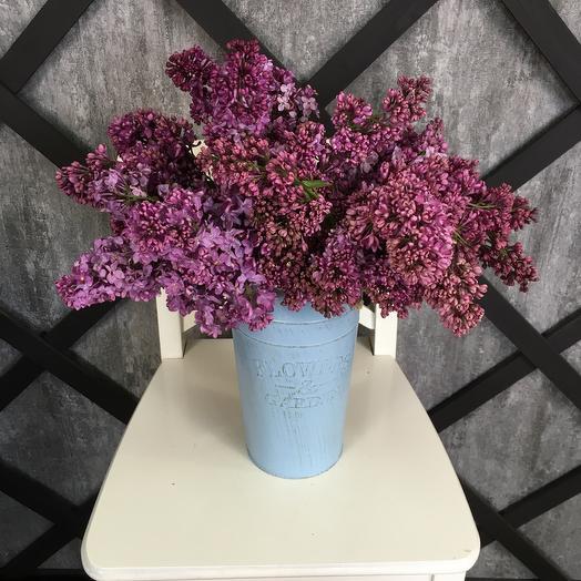 Сирень для любимой: букеты цветов на заказ Flowwow