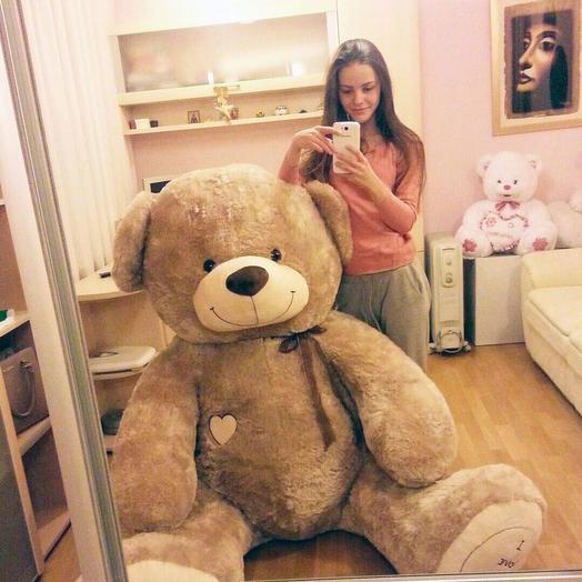 Большой Медведь Максик 180 см (кофейный)
