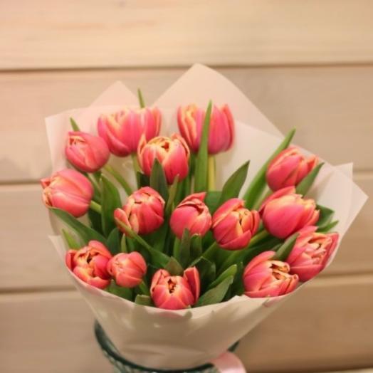 15 пионовидных Тюльпанов сорта Каламбус