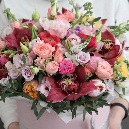 BigBox54 с винными орхидеями: букеты цветов на заказ Flowwow