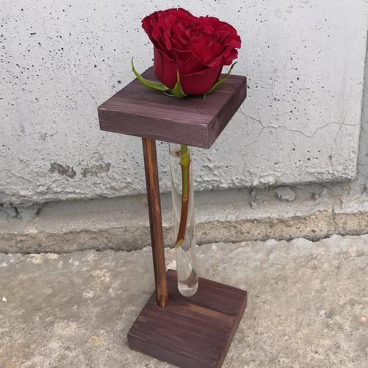Роза Красная в пробирке: букеты цветов на заказ Flowwow