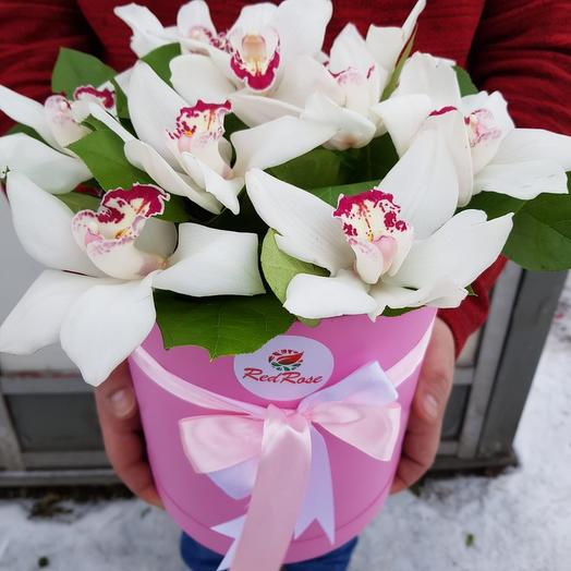 Розовая Коробка с Орхидеей: букеты цветов на заказ Flowwow