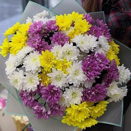 Вам хризантемы